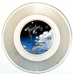 "Trudi Palmer ‎- Anything Can Happen (7"") (Clear Vinyl) (VG+/NM)"
